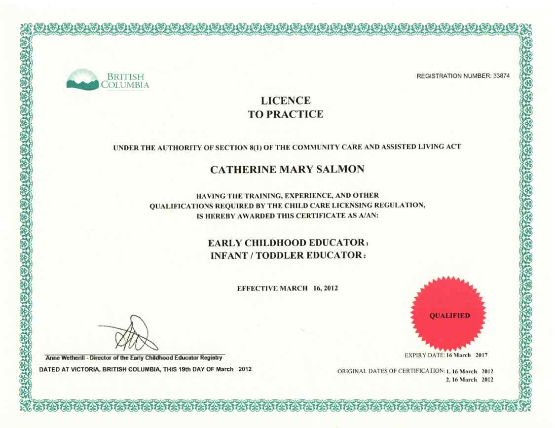 software license certificate template - ece certification images editable certificate template