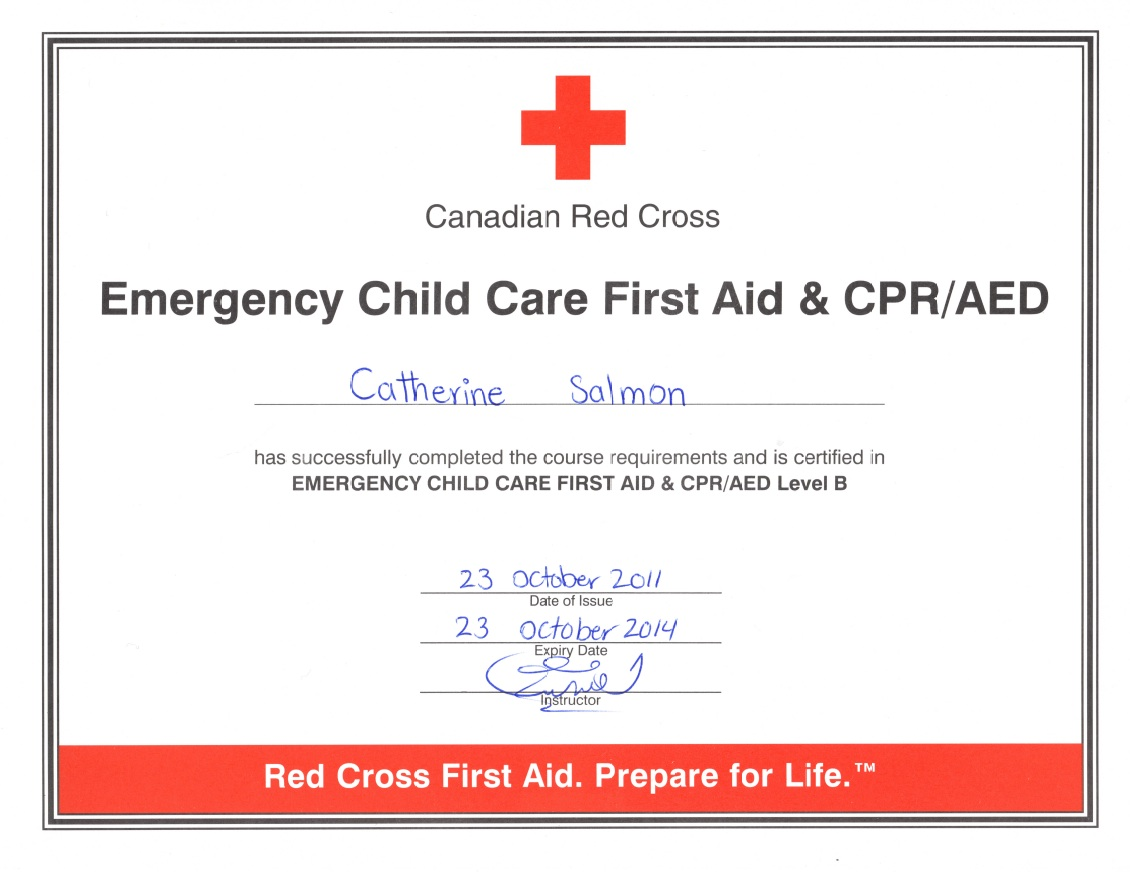 Online cpr certification online first aid certification for First aid certificate template free